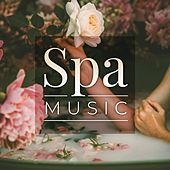 Spa Music von Various Artists
