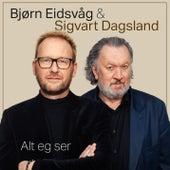 Alt eg ser by Bjørn Eidsvåg