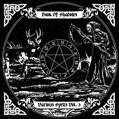 Book of Shadows: Various Spells Vol. 3 von Various Artists