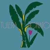 Tulipa Ruiz e João Donato de Tulipa Ruiz