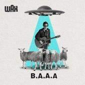 B.A.A.A. de Wax