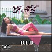 B.F.B de Kat