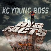 Big Facts (Clean) by Kc Young Boss