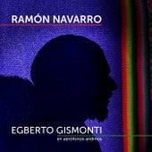 Egberto Gismonti en Aerófonos Andinos de Ramón Navarro