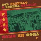 Come Se Goza (Remixes) von Rod Carrillo