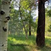 Temeku Grass de Various Artists