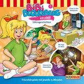 Kurzhörspiel - Bibi erzählt: Bürogeschichten von Bibi Blocksberg