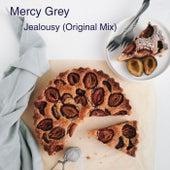 Jealousy (Original Mix) di Mercy Grey