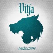 Silver Lining (feat. Carlo Knöpfel) by Vitja
