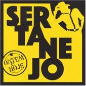 Sertanejo ontem e hoje de Various Artists