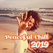 Peaceful Chill 2019: Soothing Sounds, Deep Relaxation, Summer Music, Lounge, Music Zone de Chill Out