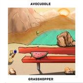 Grasshopper by Avocuddle