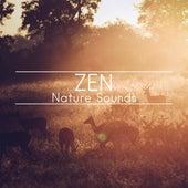 Zen Nature Sounds by Nature Sounds (1)