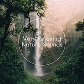 Very Relaxing Nature Sounds de Sounds Of Nature