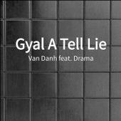 Gyal A Tell Lie by Van'danh