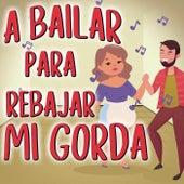 A Bailar Para Rebajar Mi Gorda de Various Artists