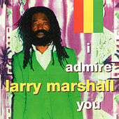 I Admire You by Larry Marshall