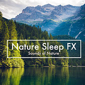 Nature Sleep FX by Sounds Of Nature