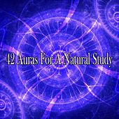 42 Auras for a Natural Study von Massage Therapy Music