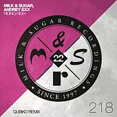 Riding High (Qubiko Extended Remix) by Milk & Sugar