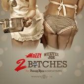 2 Bitches (feat. Philthy Rich & Louie Da Fourth) von Stevie Joe