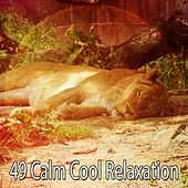 49 Calm Cool Relaxation de Dormir
