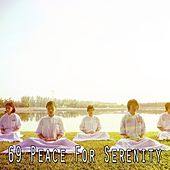 69 Peace for Serenity de Study Concentration