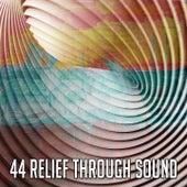 44 Relief Through Sound von Entspannungsmusik