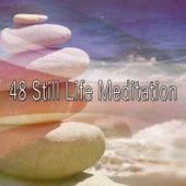 48 Still Life Meditation von Massage Therapy Music