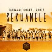 Sekwanele de Tshwane Gospel Choir