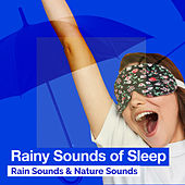 Rainy Sounds of Sleep by Rain Sounds