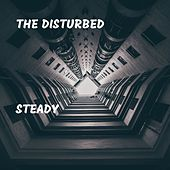 Steady de Disturbed