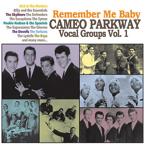 Remember Me Baby: Cameo Parkway Vocal Groups Vol. 1 by Various Artists