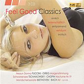 Feel Good Classics by Various Artists