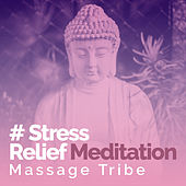 # Stress Relief Meditation de Massage Tribe