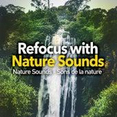 Refocus with Nature Sounds by Nature Sounds - Sons de la nature