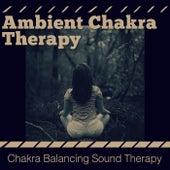 Ambient Chakra Therapy by Chakra Balancing Sound Therapy (1)