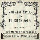 Imaginære etyder for el-gitar del 5 de Tore Morten Andreassen
