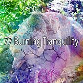 77 Burning Tranquility by Lullaby Land