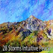 28 Storms Intuitive Peace by Rain Sounds and White Noise