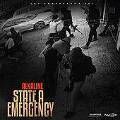 State A Emergency by Alkaline