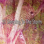 35 Sleeping to the Storm by Rain Sounds and White Noise