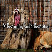 34 Resounding Ran for Restoration by Rain Sounds and White Noise
