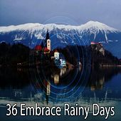 36 Embrace Rainy Days de Thunderstorm Sleep
