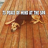 73 Peace of Mind at the Spa von Rockabye Lullaby