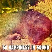 54 Happiness in Sound de Sleepicious