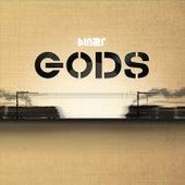 Gods von Binær