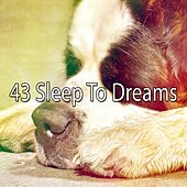 43 Sleep to Dreams by Sounds Of Nature