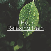 1 Hour Relaxing Rain by Rain Sounds
