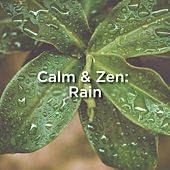 Calm & Zen: Rain by Rain Sounds